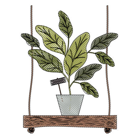 houseplant in swing decorative icon vector illustration design
