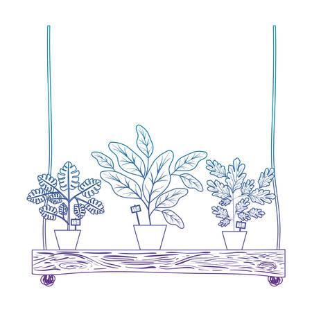 houseplants in swing decorative icon vector illustration design