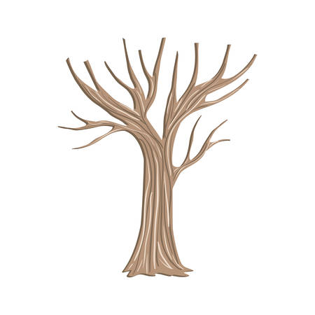 tree autumn without leafs icon vector illustration design