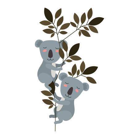 wild koalas couple in the jungle vector illustration design