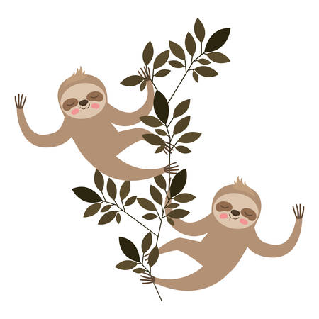 wild sloths couple in the jungle vector illustration design