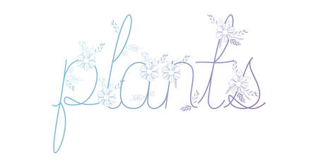 word plants with leafs decoration vector illustration design