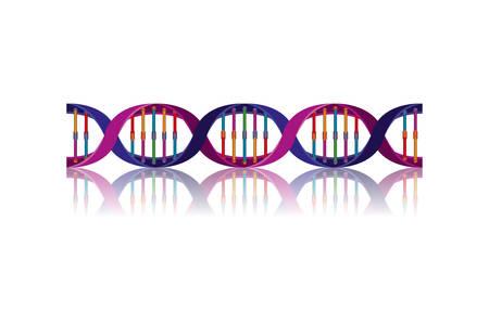 horizontal dna chain science colorful icon vector illustration design Ilustração