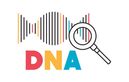 dna chain with magnifying glass vector illustration design 일러스트