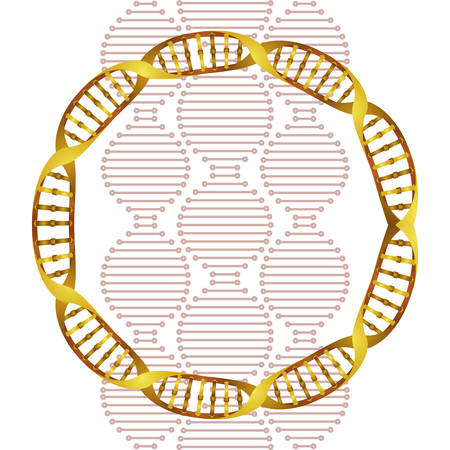 circular dna chain science icon vector illustration design