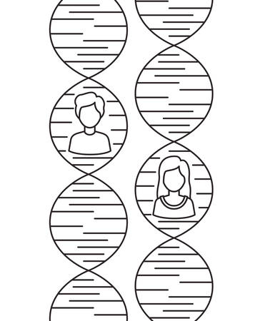 dna chain with genders characters vector illustration design 일러스트