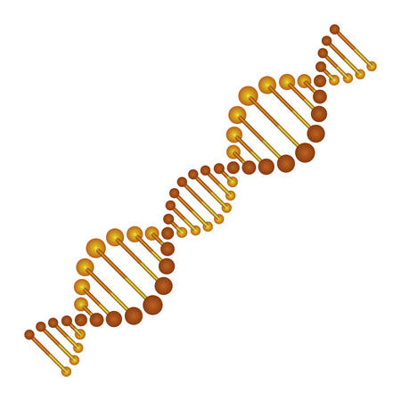 diagonal dna chain science golden color vector illustration design