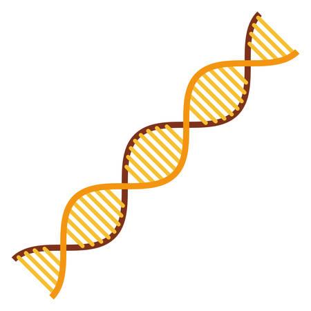 diagonal dna chain science golden color vector illustration design