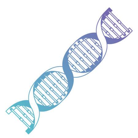 diagonal dna chain science blue color vector illustration design Illustration