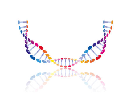 dna chain with curve science colorful icon vector illustration design