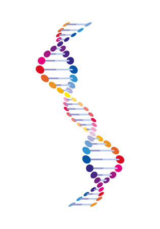vertical dna chain science colorful icon vector illustration design 일러스트