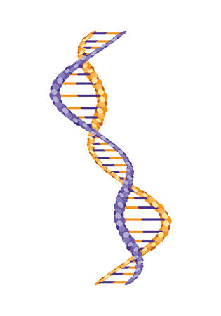 vertical dna chain science icon vector illustration design Vector Illustration