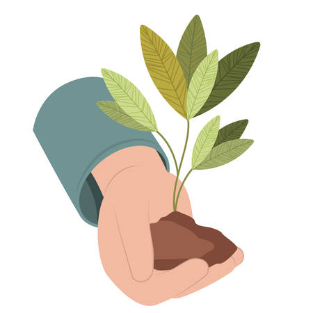 hand with tree plant isolated icon vector illustration desing