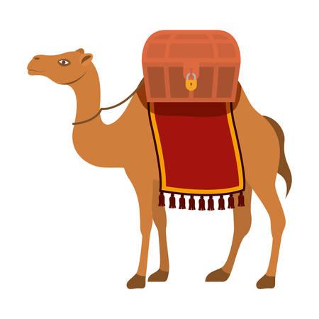 Lindo animal del desierto camello. Diseño de ilustración vectorial
