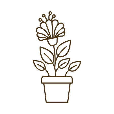 potted flowers isolated icon vector illustration design