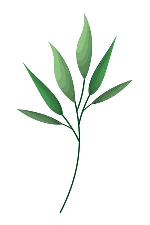 branch with leafs isolated icon vector illustration desing