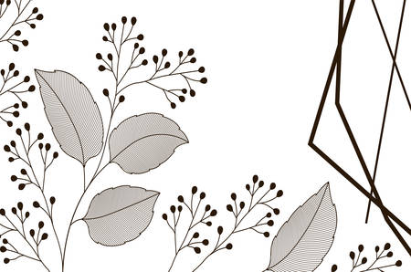 flowers with leaves and geometrical lines icon vector illustration design Vector Illustration