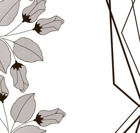 flowers with leaves and geometrical lines icon vector illustration design Illustration