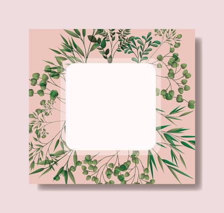 square frame with laurel leafs vector illustration design Illustration