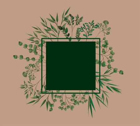 square frame with laurel leafs vector illustration design Stock Illustratie