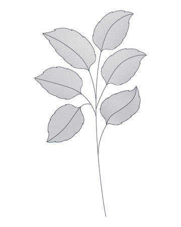 branches with leaves isolated icon vector illustration design