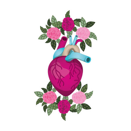 heart with veins and flowers isolated icon vector illustration desing Illustration