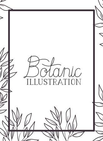 botanic illustration label with plants vector illustration desing
