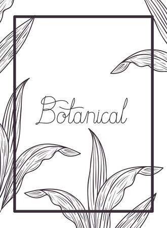 botanical label with plants isolated icon vector illustration desing  イラスト・ベクター素材