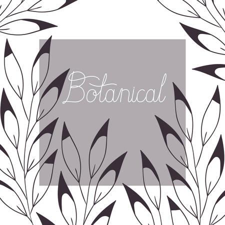 botanical illustration label with plants vector illustration desing  イラスト・ベクター素材