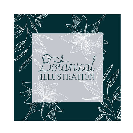 botanical illustration label with plants vector illustration desing
