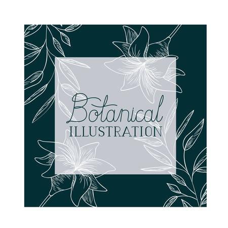 botanical illustration label with plants vector illustration desing Illustration