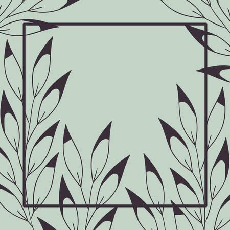 botanical plants and herbs square frame vector illustration design