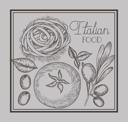 olive and tomatoes plant drawn italian food vector illustration design