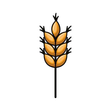 wheat leaves isolated icon vector illustration Çizim