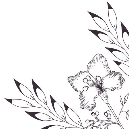 pattern plants and herbs isolated icon vector illustration design  イラスト・ベクター素材