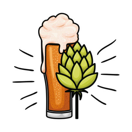 beer with foam and pinecone isolated icon vector illustration