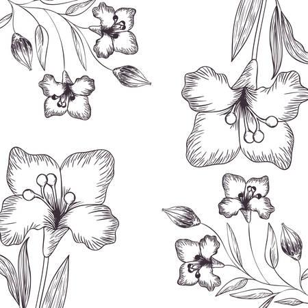 wzór kwiaty i liście na białym tle ikona ilustracja wektorowa