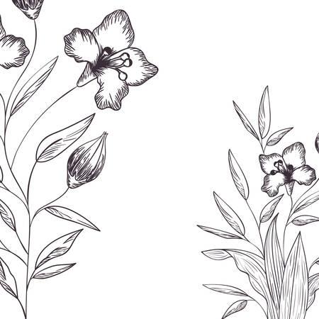 pattern plants and herbs isolated icon vector illustration design Stock Illustratie