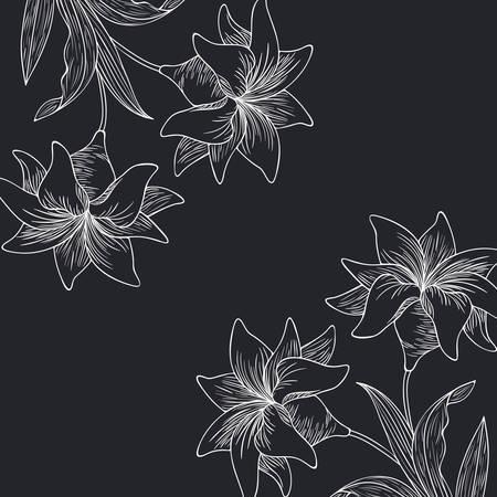 Plantes et herbes modèle isolé conception d'illustration vectorielle icône