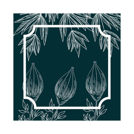 frame with plants and herbs isolated icon vector illustration
