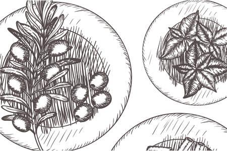 pattern of delicious italian food vector illustration