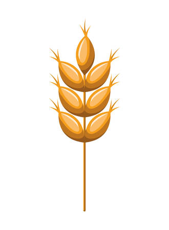 wheat leaves isolated icon vector illustration Ilustração