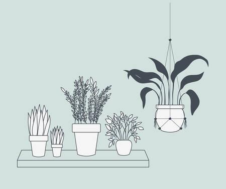 houseplants in macrame hangers and swing vector illustration design Vectores