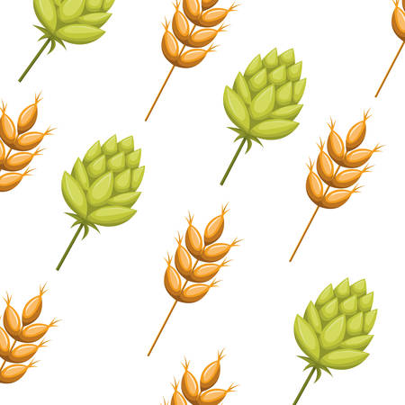 pattern wheat leaves and pinecone isolated icon