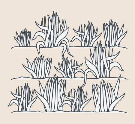 marine plants ecosystem scene vector illustration design