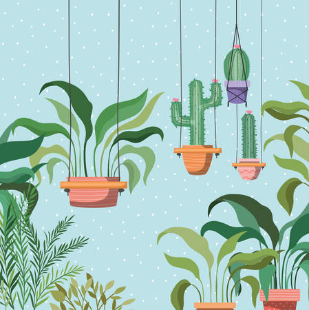 houseplants in macrame hangers garden scene vector illustration design Ilustrace