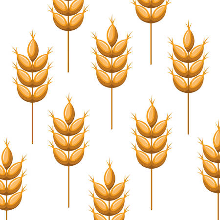pattern wheat leaves isolated icon vector illustration desing