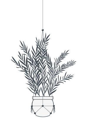 houseplant on macrame hangers icon vector illustration design