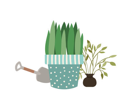 houseplants with potted isolated icon vector illustration design