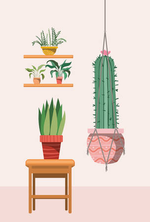 houseplants in macrame hangers and wooden chair vector illustration design